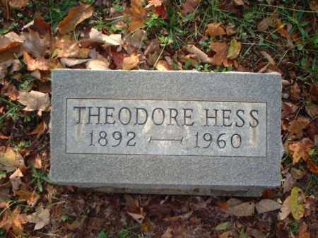 HESS, THEODORE - Meigs County, Ohio | THEODORE HESS - Ohio Gravestone Photos