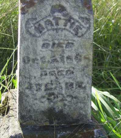 HIGLEY, HATTIE - CLOSE VIEW - Meigs County, Ohio | HATTIE - CLOSE VIEW HIGLEY - Ohio Gravestone Photos