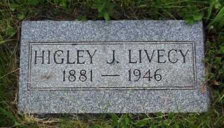 LIVECY, HIGLEY J. - Meigs County, Ohio | HIGLEY J. LIVECY - Ohio Gravestone Photos