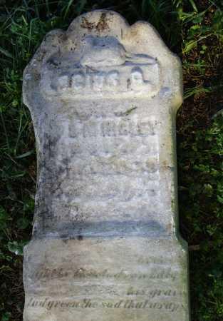 HIGLEY, LUCIUS ?. - Meigs County, Ohio   LUCIUS ?. HIGLEY - Ohio Gravestone Photos