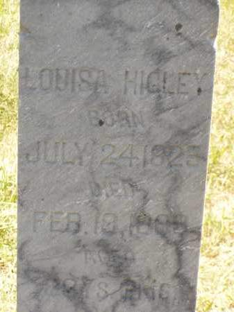 HIGLEY, LOUISA - Meigs County, Ohio | LOUISA HIGLEY - Ohio Gravestone Photos