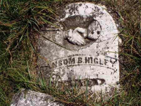 HIGLEY, RANSOM B. - Meigs County, Ohio | RANSOM B. HIGLEY - Ohio Gravestone Photos