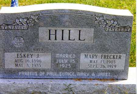 HILL, MARY - Meigs County, Ohio | MARY HILL - Ohio Gravestone Photos