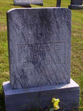 HILL, HARLEY E. - Meigs County, Ohio | HARLEY E. HILL - Ohio Gravestone Photos