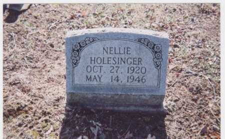 HOLESINGER, NELLIE - Meigs County, Ohio | NELLIE HOLESINGER - Ohio Gravestone Photos