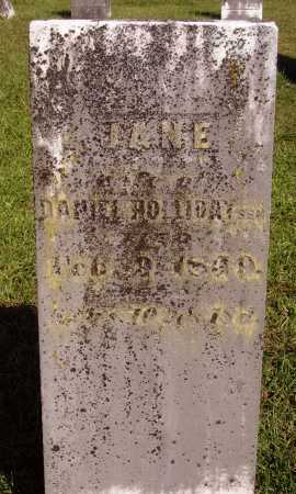 HOLLIDAY, JANE - Meigs County, Ohio | JANE HOLLIDAY - Ohio Gravestone Photos
