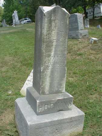 HOPKINS, D. F. - Meigs County, Ohio   D. F. HOPKINS - Ohio Gravestone Photos