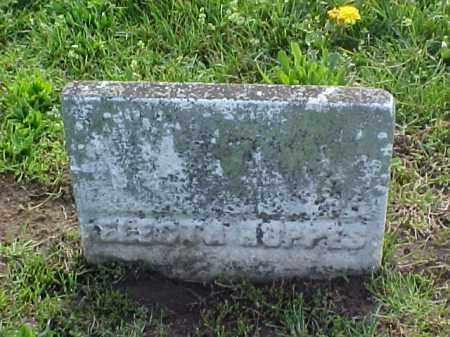 HOPPES, ELECTA - Meigs County, Ohio | ELECTA HOPPES - Ohio Gravestone Photos
