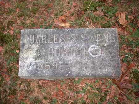 HORTON, CHARLES STEVENS - Meigs County, Ohio | CHARLES STEVENS HORTON - Ohio Gravestone Photos