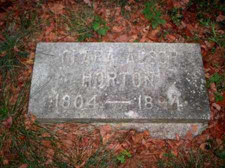 ALSOP HORTON, CLARA - Meigs County, Ohio | CLARA ALSOP HORTON - Ohio Gravestone Photos
