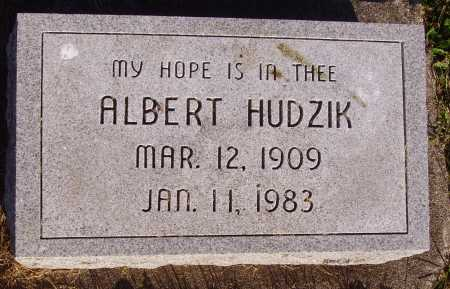 HUDZIK, ALBERT - Meigs County, Ohio | ALBERT HUDZIK - Ohio Gravestone Photos