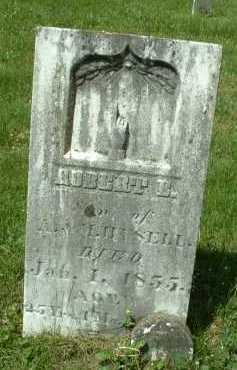 HYSELL, ROBERT - Meigs County, Ohio   ROBERT HYSELL - Ohio Gravestone Photos