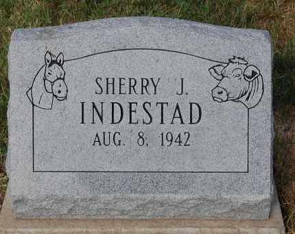 INDESTAD, SHERRY J. - Meigs County, Ohio | SHERRY J. INDESTAD - Ohio Gravestone Photos