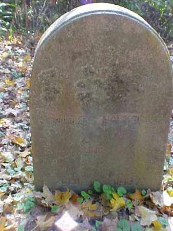 JACKSON, EMELINE - Meigs County, Ohio | EMELINE JACKSON - Ohio Gravestone Photos