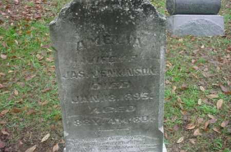 JENKINSON, AMELIA - Meigs County, Ohio | AMELIA JENKINSON - Ohio Gravestone Photos