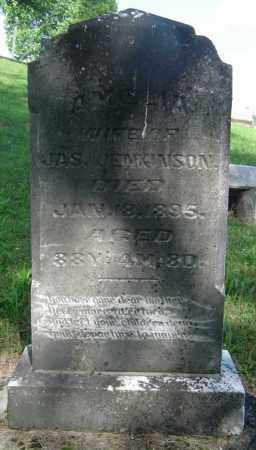 MARTIN JENKINSON, AMELIA - Meigs County, Ohio | AMELIA MARTIN JENKINSON - Ohio Gravestone Photos