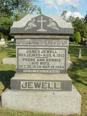 BURRIS JEWELL, PHEBE ANN - Meigs County, Ohio | PHEBE ANN BURRIS JEWELL - Ohio Gravestone Photos