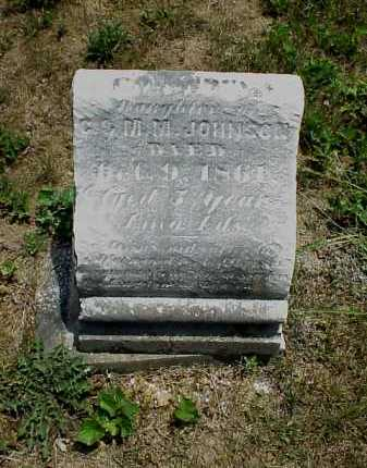 JOHNSON, LEOAITTA S. - Meigs County, Ohio | LEOAITTA S. JOHNSON - Ohio Gravestone Photos
