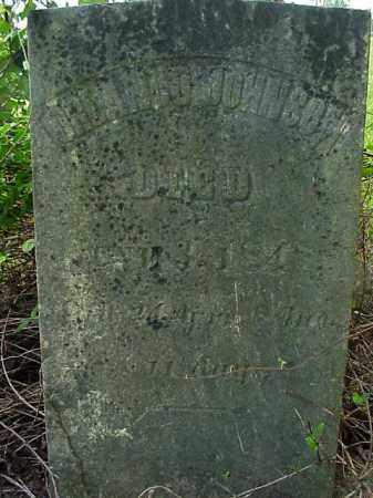 JOHNSON, ORDANLO - Meigs County, Ohio   ORDANLO JOHNSON - Ohio Gravestone Photos