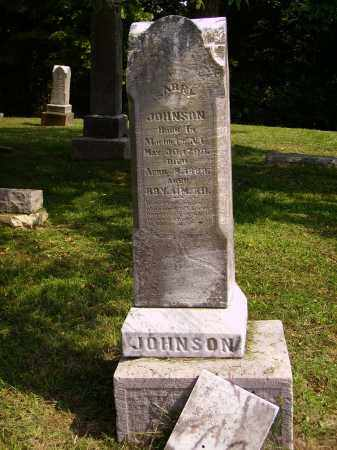JOHNSON, SARRY - Meigs County, Ohio | SARRY JOHNSON - Ohio Gravestone Photos