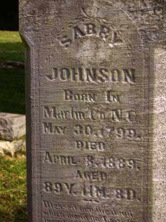 JOHNSON, SARRY [CLOSE VIEW] - Meigs County, Ohio | SARRY [CLOSE VIEW] JOHNSON - Ohio Gravestone Photos