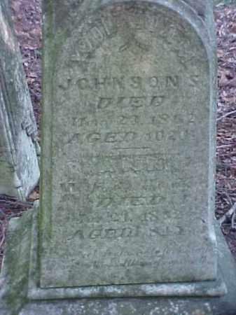 JOHNSONS, WILLIAM - Meigs County, Ohio | WILLIAM JOHNSONS - Ohio Gravestone Photos