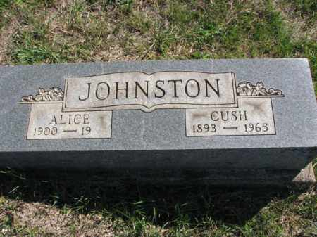 JOHNSTON, CUSH - Meigs County, Ohio | CUSH JOHNSTON - Ohio Gravestone Photos