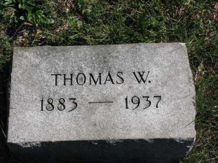 JOHNSTON, THOMAS W. - Meigs County, Ohio | THOMAS W. JOHNSTON - Ohio Gravestone Photos