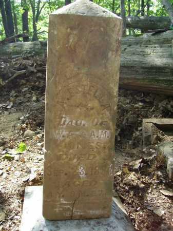 JONES, ALICE ESTELLA - MONUMENT - Meigs County, Ohio   ALICE ESTELLA - MONUMENT JONES - Ohio Gravestone Photos