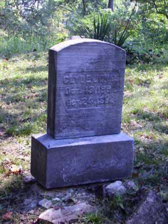 JONES, CLYDE - Meigs County, Ohio | CLYDE JONES - Ohio Gravestone Photos