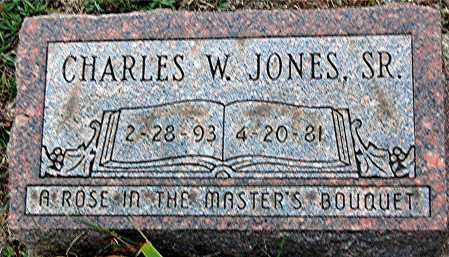 JONES, CHARLES W. - Meigs County, Ohio | CHARLES W. JONES - Ohio Gravestone Photos
