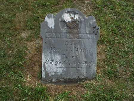 JONES, ISAAC H. - Meigs County, Ohio | ISAAC H. JONES - Ohio Gravestone Photos