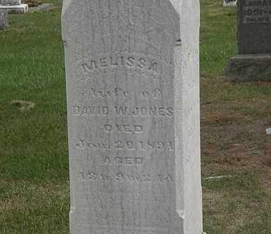 JONES, DAVID W. - Meigs County, Ohio | DAVID W. JONES - Ohio Gravestone Photos
