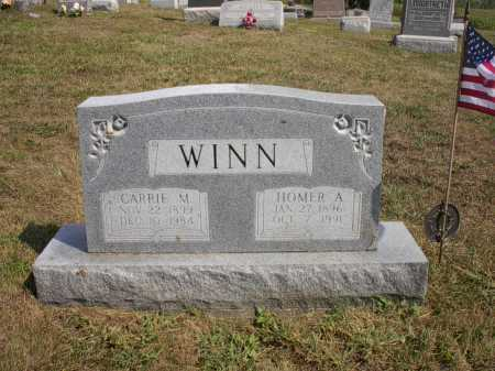 WINN, HOMER A. - Meigs County, Ohio | HOMER A. WINN - Ohio Gravestone Photos