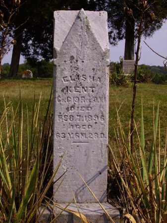 KENT, ELISHA - Meigs County, Ohio | ELISHA KENT - Ohio Gravestone Photos