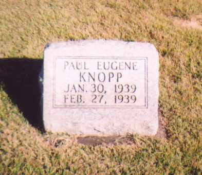 KNOPP, PAUL EUGENE - Meigs County, Ohio | PAUL EUGENE KNOPP - Ohio Gravestone Photos