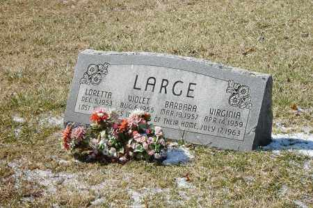 LARGE, VIRGINIA SUE - Meigs County, Ohio | VIRGINIA SUE LARGE - Ohio Gravestone Photos