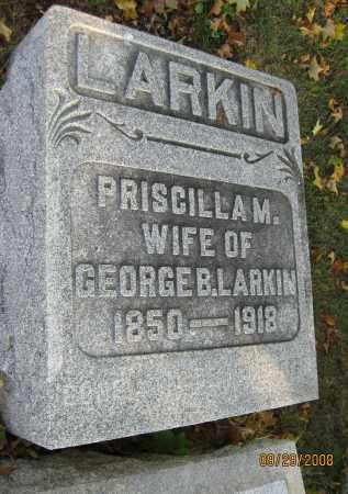 LARKIN, PRISCILLA M - Meigs County, Ohio | PRISCILLA M LARKIN - Ohio Gravestone Photos
