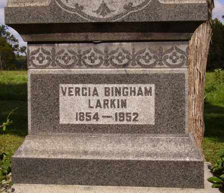 BINGHAM LARKIN, VERCIA - Meigs County, Ohio | VERCIA BINGHAM LARKIN - Ohio Gravestone Photos