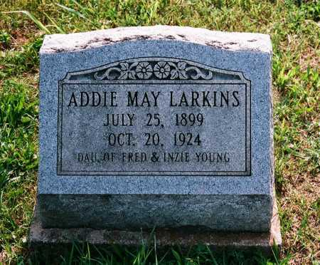 YOUNG LARKINS, ADDIE MAY - Meigs County, Ohio | ADDIE MAY YOUNG LARKINS - Ohio Gravestone Photos