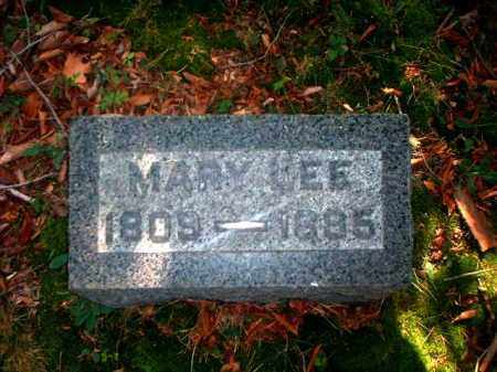 LEE, MARY - Meigs County, Ohio | MARY LEE - Ohio Gravestone Photos