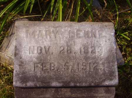 LEHNE, MARY - CLOSE VIEW - Meigs County, Ohio | MARY - CLOSE VIEW LEHNE - Ohio Gravestone Photos