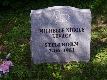 LEVACY, MICHELLE NICOLE - Meigs County, Ohio | MICHELLE NICOLE LEVACY - Ohio Gravestone Photos