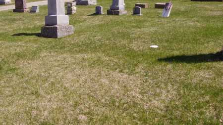 LIGHTFOOT, ELIZA EDITH - Meigs County, Ohio | ELIZA EDITH LIGHTFOOT - Ohio Gravestone Photos