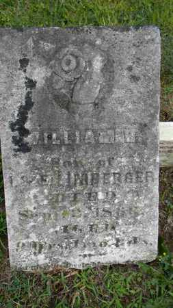 LIMBERGER, WILLIAM H. - Meigs County, Ohio | WILLIAM H. LIMBERGER - Ohio Gravestone Photos