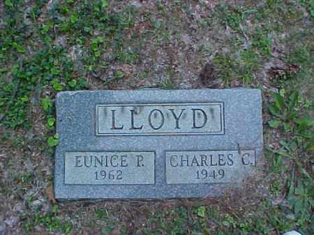 LLOYD, EUNICE P. - Meigs County, Ohio | EUNICE P. LLOYD - Ohio Gravestone Photos