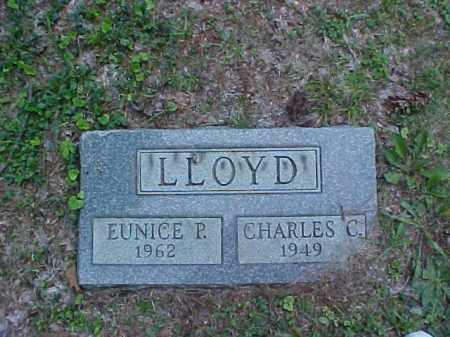 LLOYD, EUNICE P. - Meigs County, Ohio | EUNICE P. LLOYD - Ohio Gravestone Photos