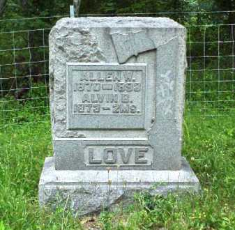 LOVE, ALLEN W. - Meigs County, Ohio | ALLEN W. LOVE - Ohio Gravestone Photos