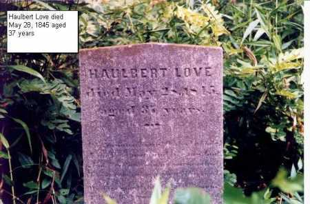 LOVE, HAULBERT - Meigs County, Ohio | HAULBERT LOVE - Ohio Gravestone Photos
