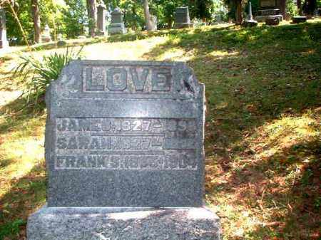 LOVE, JAMES - Meigs County, Ohio | JAMES LOVE - Ohio Gravestone Photos